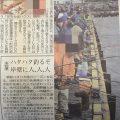 2017 秋田でハタハタ釣りをする人々